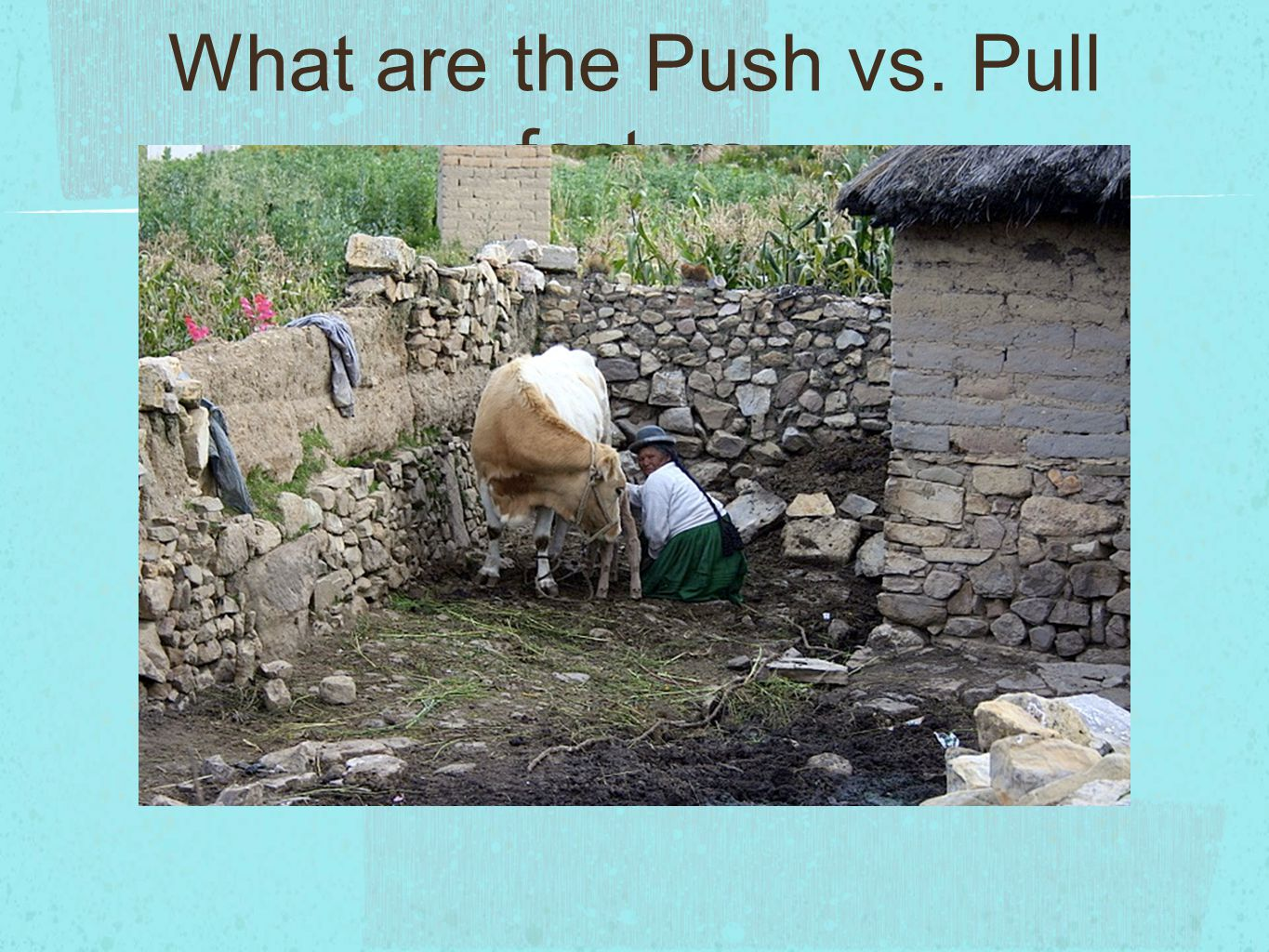 What are the Push vs. Pull factors
