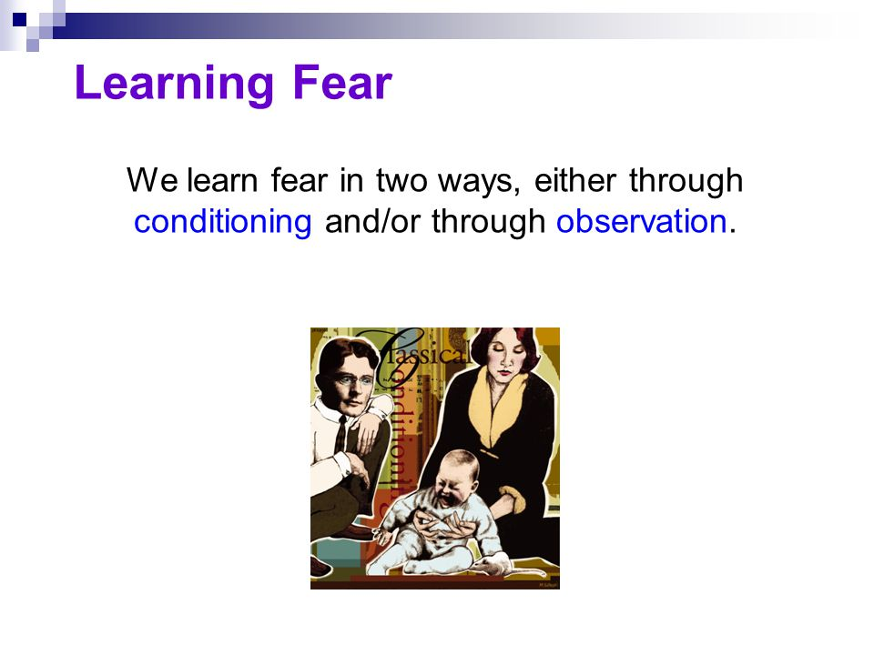 The Biology of Fear Some fears are easier to learn than others.