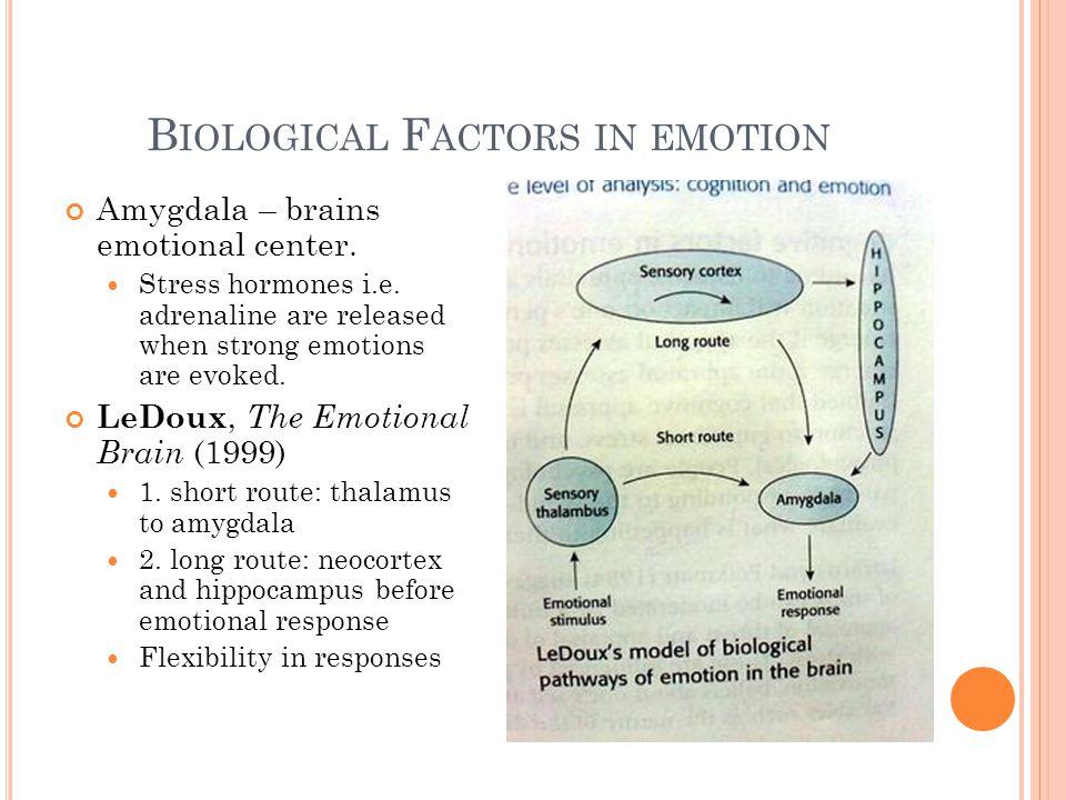B IOLOGICAL F ACTORS IN EMOTION Amygdala – brains emotional center.