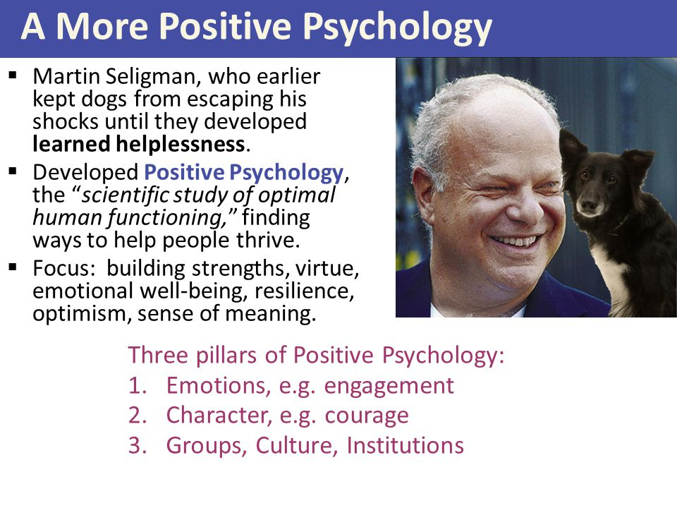 A More Positive Psychology  Martin Seligman, who earlier kept dogs from escaping his shocks until they developed learned helplessness.  Developed Po
