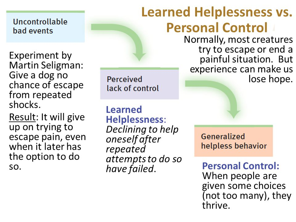 Learned Helplessness vs.