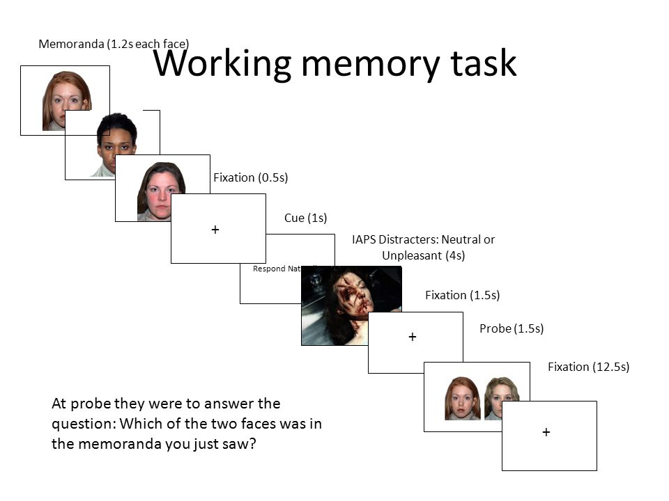 Working memory task Respond Naturally Memoranda (1.2s each face) IAPS Distracters: Neutral or Unpleasant (4s) Fixation (12.5s) Probe (1.5s) Fixation (0.5s) Fixation (1.5s) + + + Cue (1s) At probe they were to answer the question: Which of the two faces was in the memoranda you just saw?