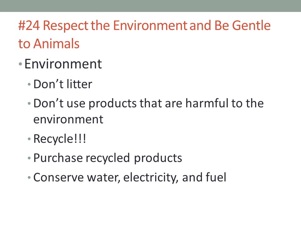 #24 Respect the Environment and Be Gentle to Animals Environment Don't litter Don't use products that are harmful to the environment Recycle!!.