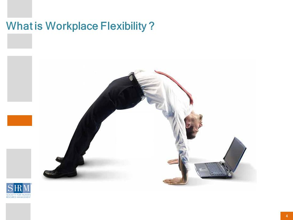4 What is Workplace Flexibility