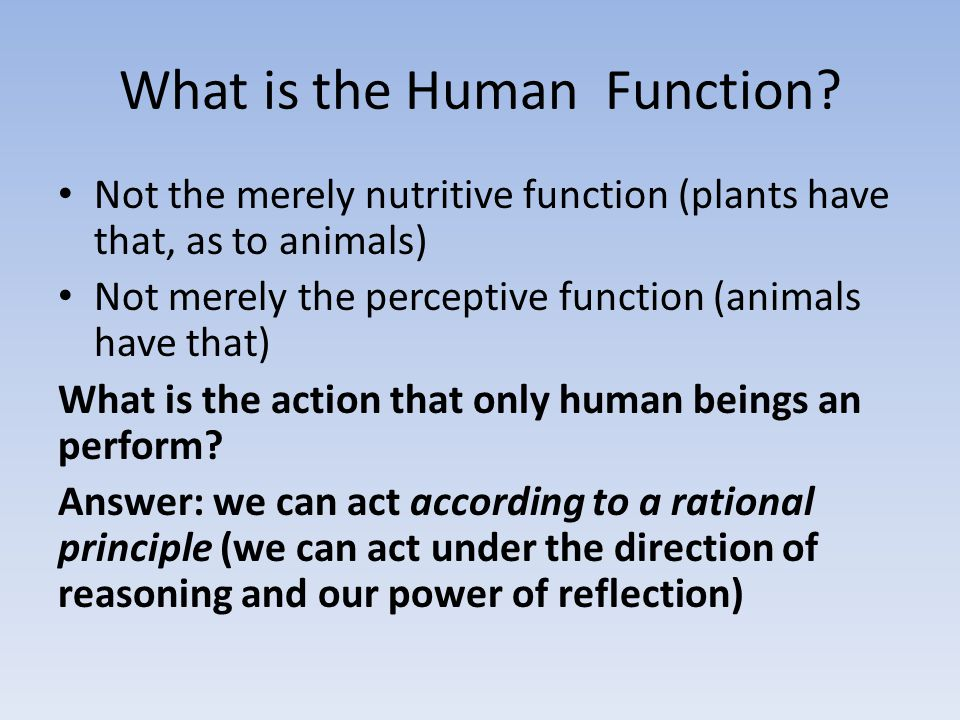 What is the Human Function.