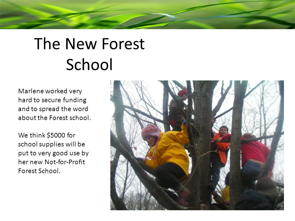 The New Forest School Marlene worked very hard to secure funding and to spread the word about the Forest school.