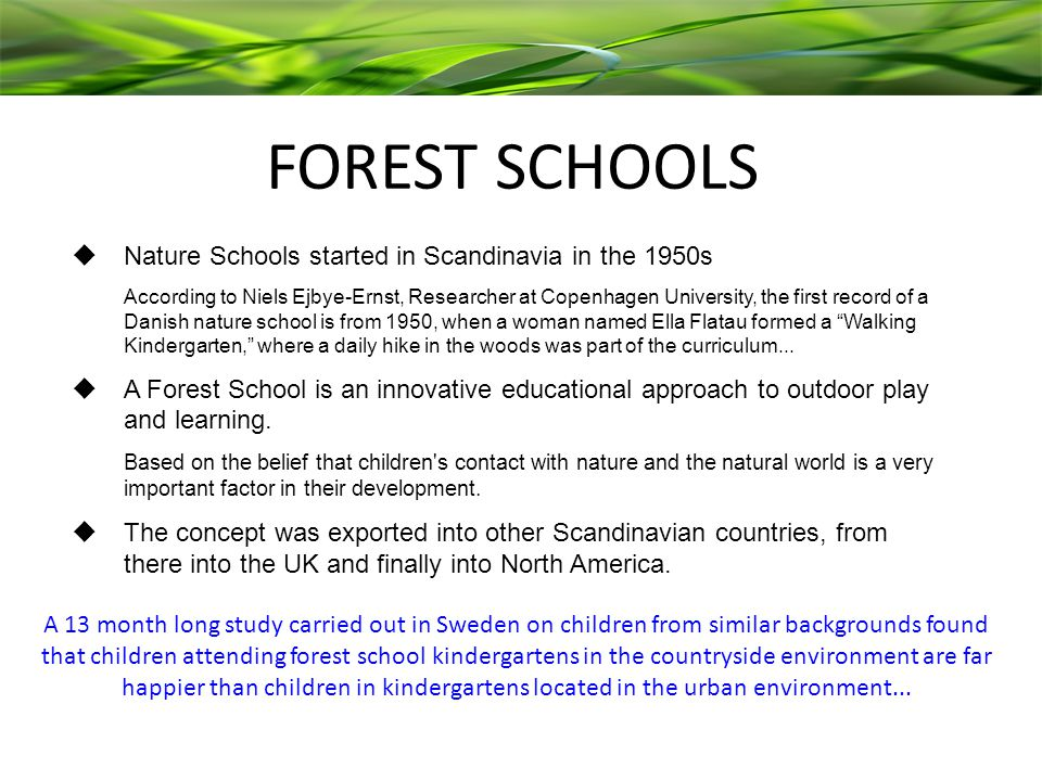 FOREST SCHOOLS  Nature Schools started in Scandinavia in the 1950s According to Niels Ejbye-Ernst, Researcher at Copenhagen University, the first record of a Danish nature school is from 1950, when a woman named Ella Flatau formed a Walking Kindergarten, where a daily hike in the woods was part of the curriculum...