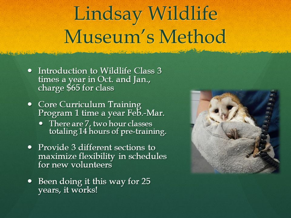 Lindsay Wildlife Museum's Method Introduction to Wildlife Class 3 times a year in Oct.