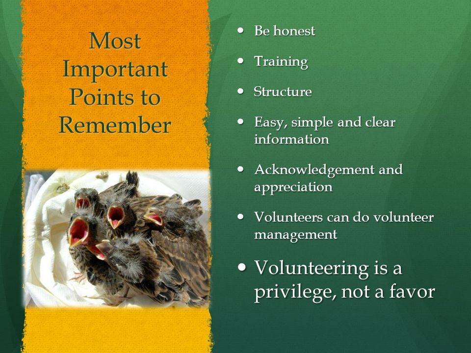 Most Important Points to Remember Be honest Be honest Training Training Structure Structure Easy, simple and clear information Easy, simple and clear information Acknowledgement and appreciation Acknowledgement and appreciation Volunteers can do volunteer management Volunteers can do volunteer management Volunteering is a privilege, not a favor Volunteering is a privilege, not a favor