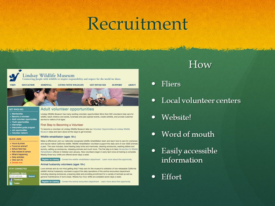 Recruitment How Fliers Local volunteer centers Website.