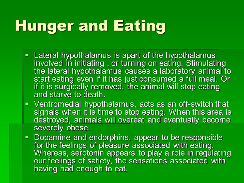 Hunger and Eating  Lateral hypothalamus is apart of the hypothalamus involved in initiating, or turning on eating. Stimulating the lateral hypothalam