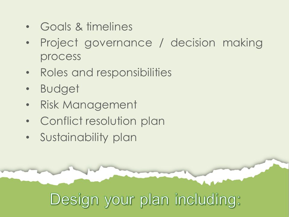 Goals & timelines Project governance / decision making process Roles and responsibilities Budget Risk Management Conflict resolution plan Sustainability plan