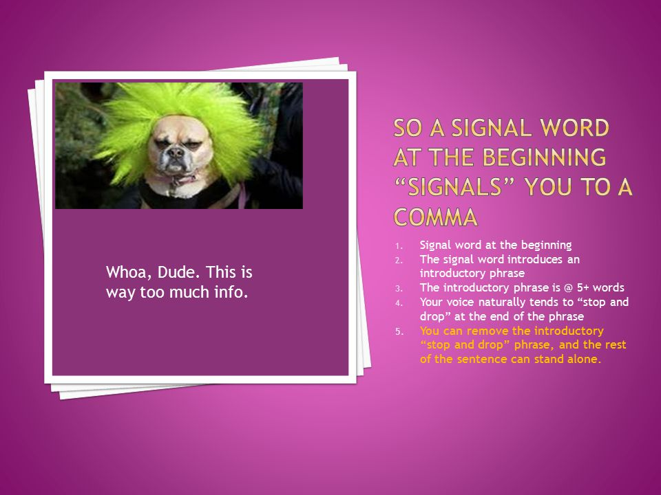 1.Signal word at the beginning 2. The signal word introduces an introductory phrase 3.