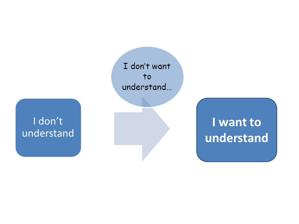 I don't understand I don't want to understand… I want to understand