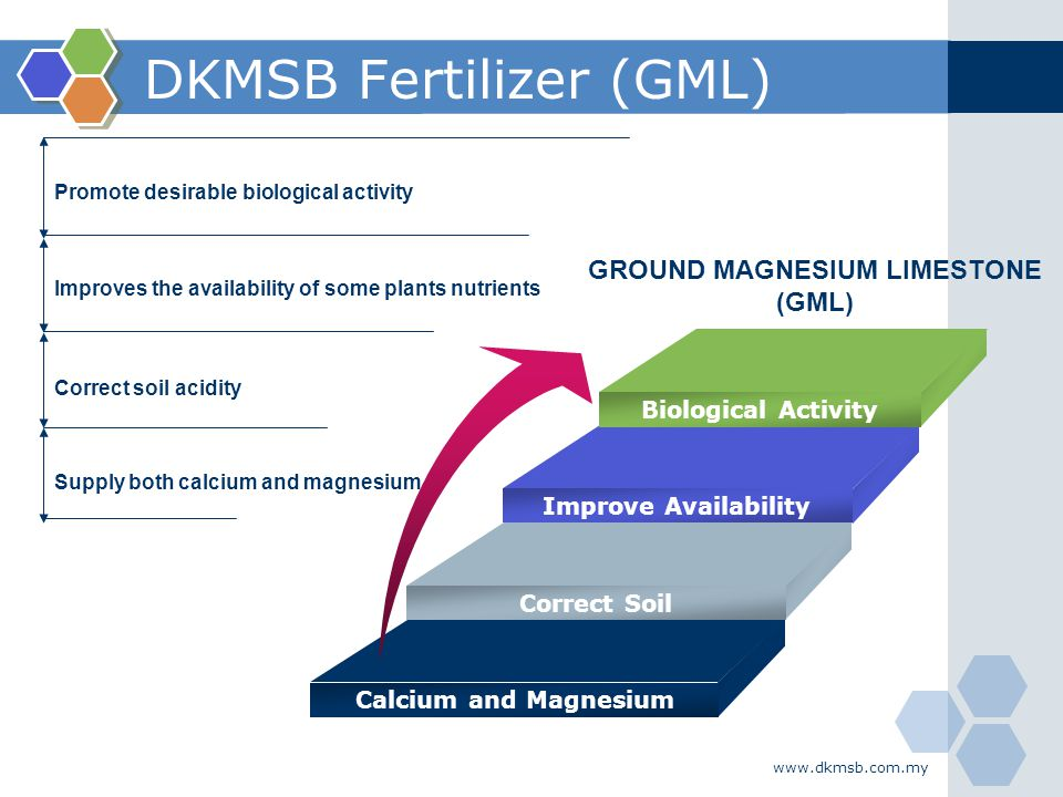 www.dkmsb.com.my DKMSB Fertilizer (GML) Promote desirable biological activity Improves the availability of some plants nutrients Correct soil acidity