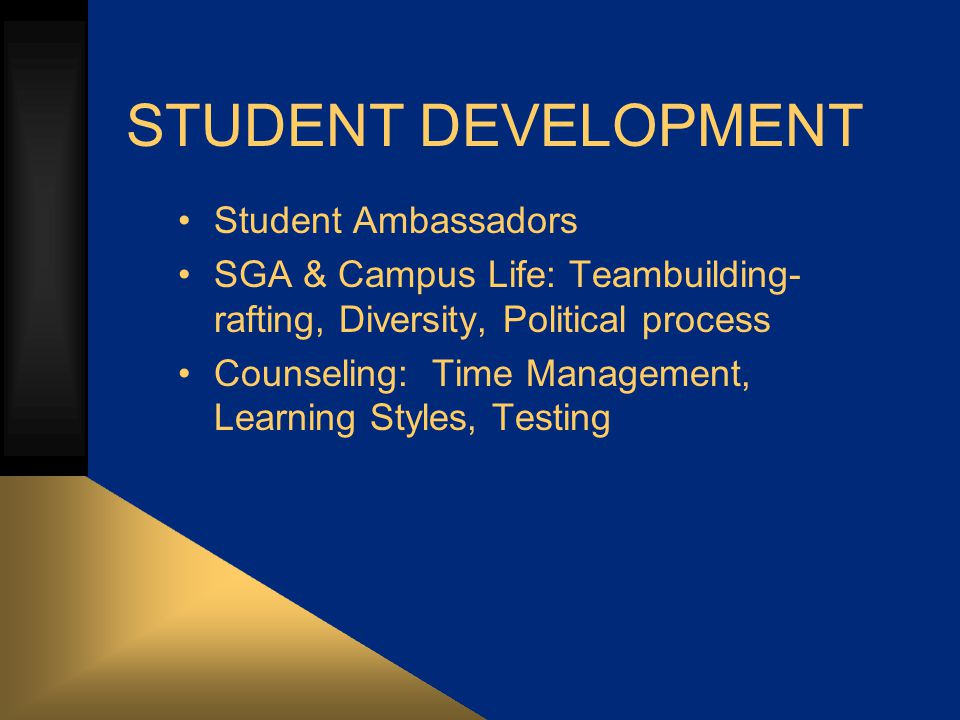 STUDENT DEVELOPMENT Student Ambassadors SGA & Campus Life: Teambuilding- rafting, Diversity, Political process Counseling: Time Management, Learning Styles, Testing