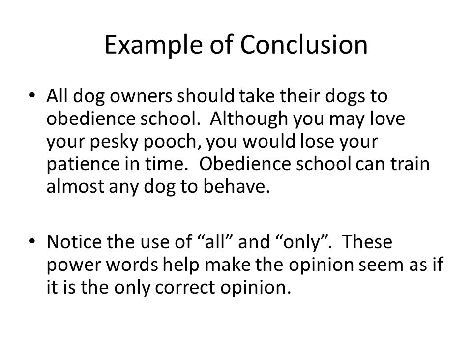Example of Conclusion All dog owners should take their dogs to obedience school. Although you may love your pesky pooch, you would lose your patience
