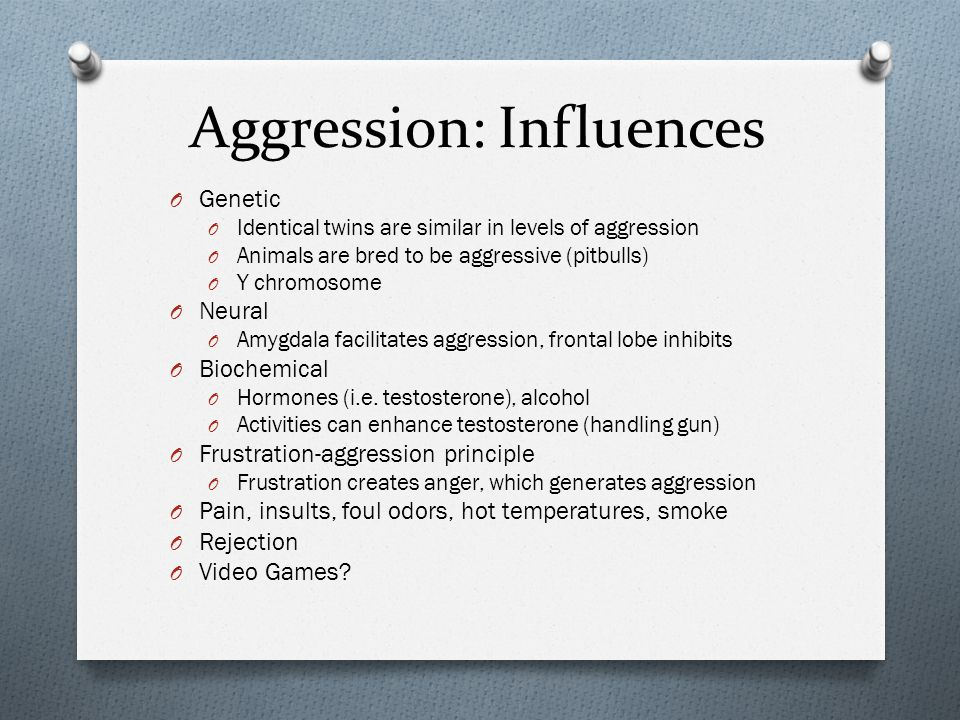 Aggression: Influences O Genetic O Identical twins are similar in levels of aggression O Animals are bred to be aggressive (pitbulls) O Y chromosome O