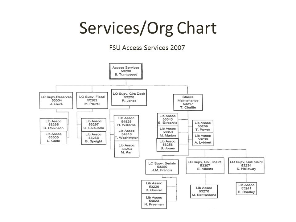Services/Org Chart FSU Access Services 2007