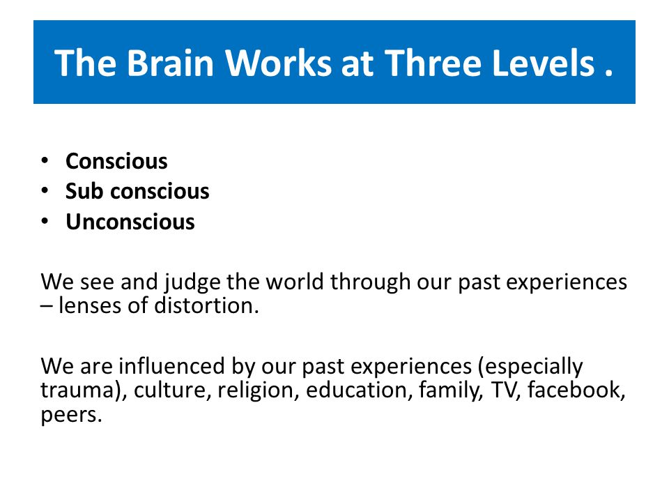 The Brain Works at Three Levels.