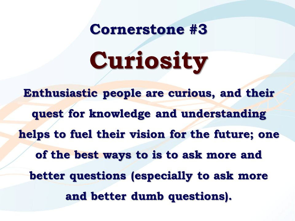 Cornerstone #3 Curiosity Enthusiastic people are curious, and their quest for knowledge and understanding helps to fuel their vision for the future; o