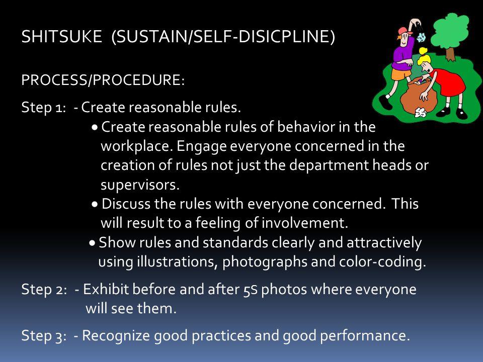 "SEIKETSU (SANITIZE/STANDARDIZE) PROCESS/PROCEDURE: Step 1: - Establish standards for maintaining compliance with 3 S. - Remember the 3 ""NO"" principles"