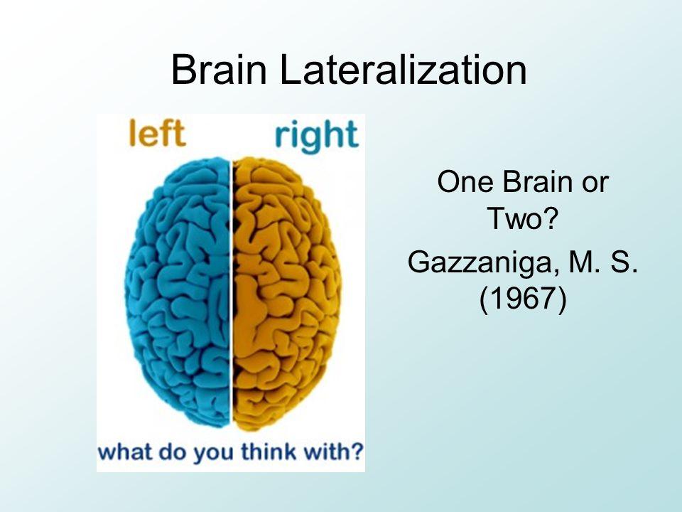 Brain Lateralization One Brain or Two? Gazzaniga, M. S. (1967)