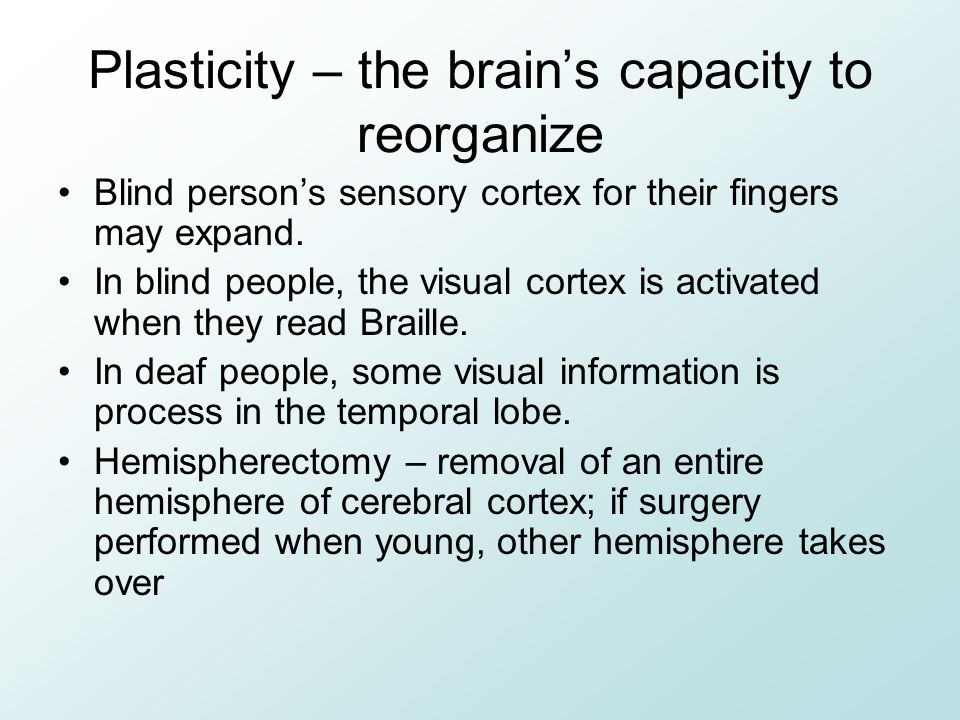 Plasticity – the brain's capacity to reorganize Blind person's sensory cortex for their fingers may expand. In blind people, the visual cortex is acti