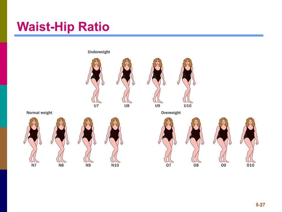 5-27 Waist-Hip Ratio