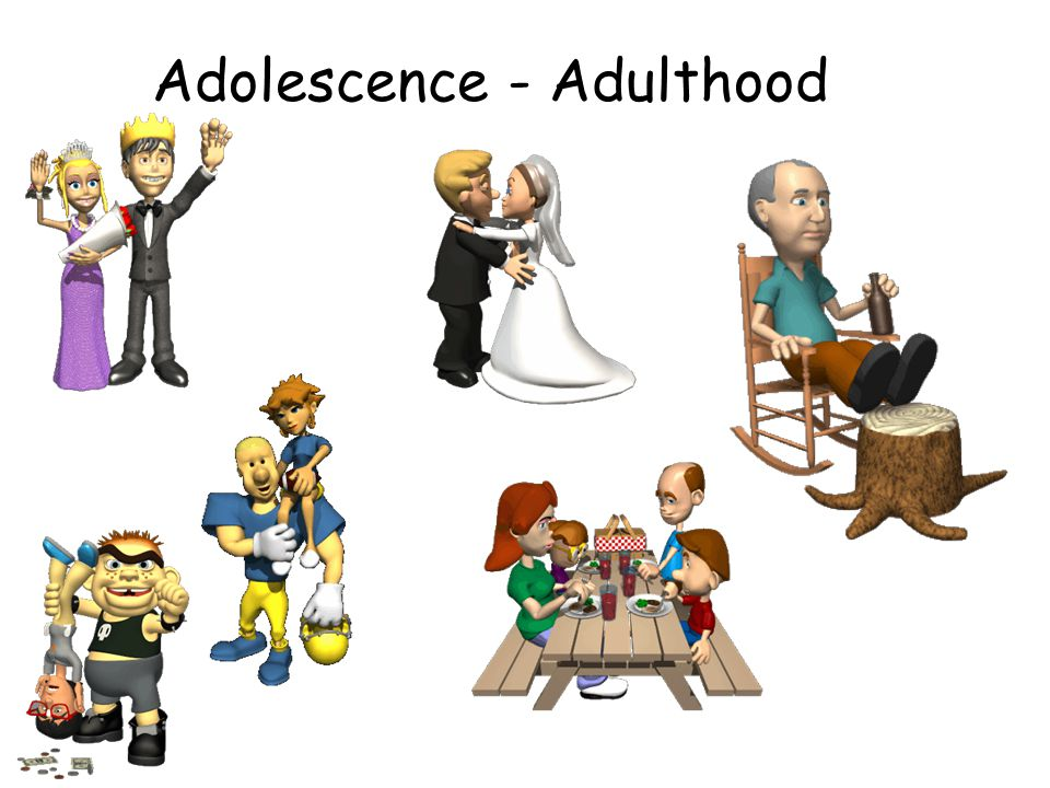 Adolescence - Adulthood