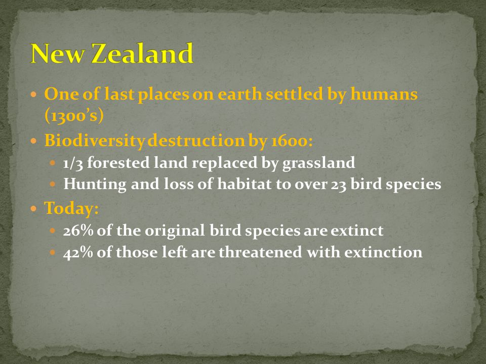 One of last places on earth settled by humans (1300's) Biodiversity destruction by 1600: 1/3 forested land replaced by grassland Hunting and loss of habitat to over 23 bird species Today: 26% of the original bird species are extinct 42% of those left are threatened with extinction