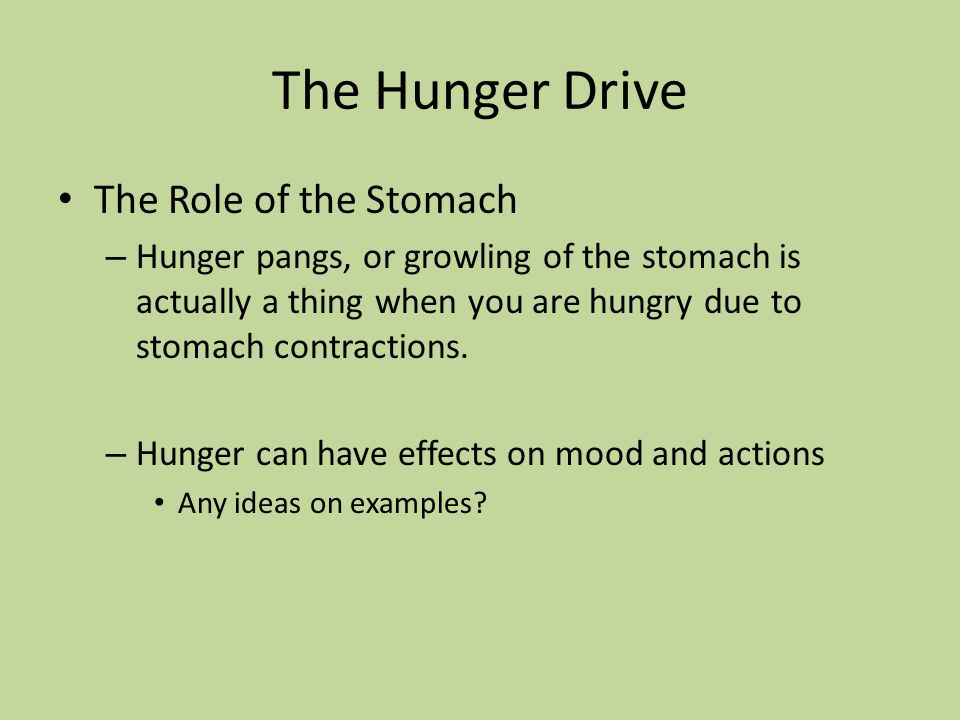 The Hunger Drive The Role of the Stomach – Hunger pangs, or growling of the stomach is actually a thing when you are hungry due to stomach contraction