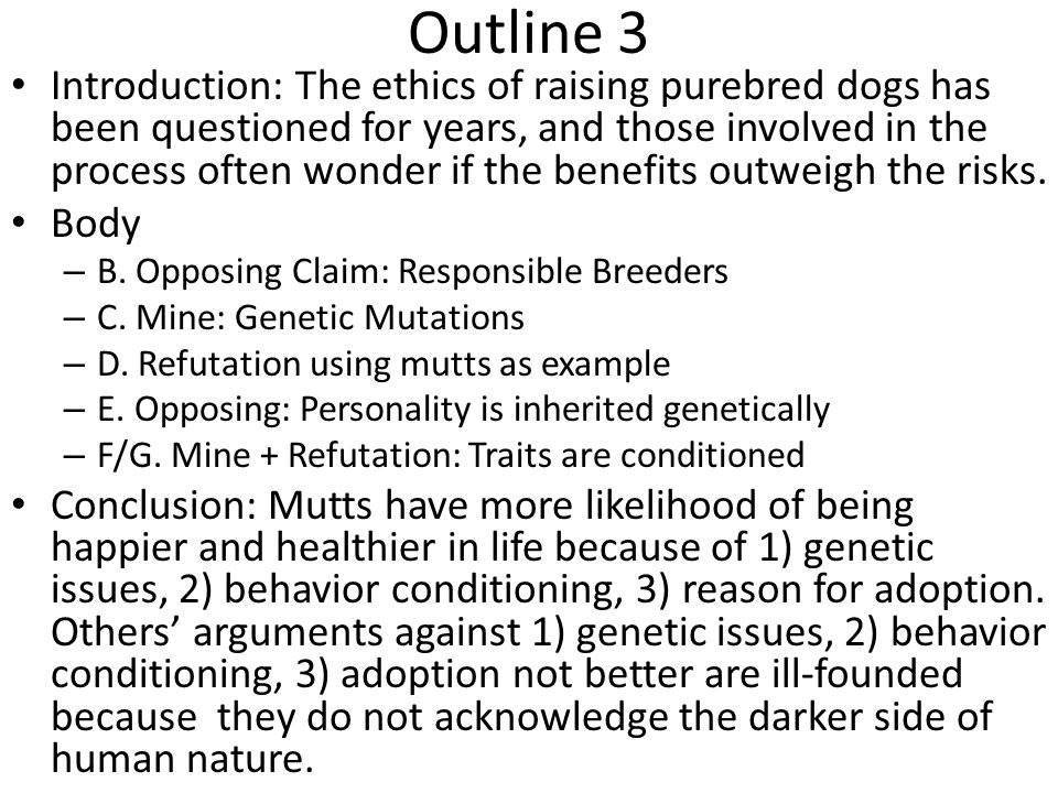 I conclude… Mutts have a higher resistance to these issues because they have more altered genes