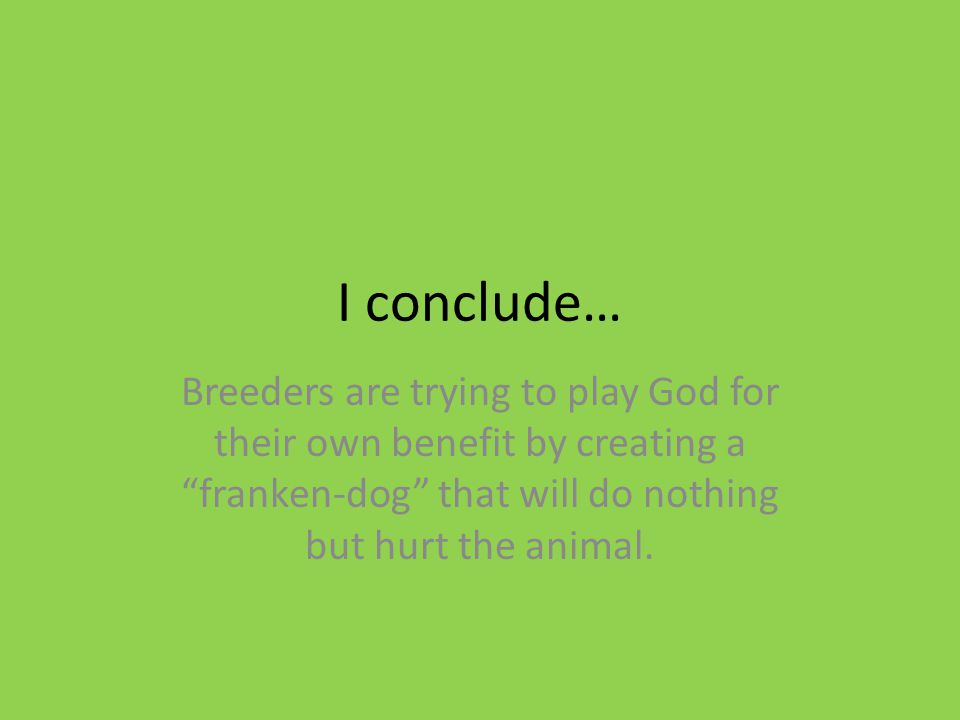 I conclude… Breeders are trying to play God for their own benefit by creating a franken-dog that will do nothing but hurt the animal.