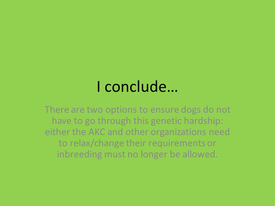 I conclude… There are two options to ensure dogs do not have to go through this genetic hardship: either the AKC and other organizations need to relax/change their requirements or inbreeding must no longer be allowed.