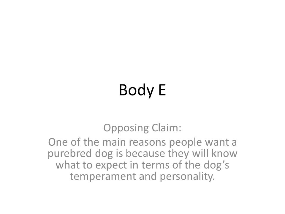 Body E Opposing Claim: One of the main reasons people want a purebred dog is because they will know what to expect in terms of the dog's temperament and personality.