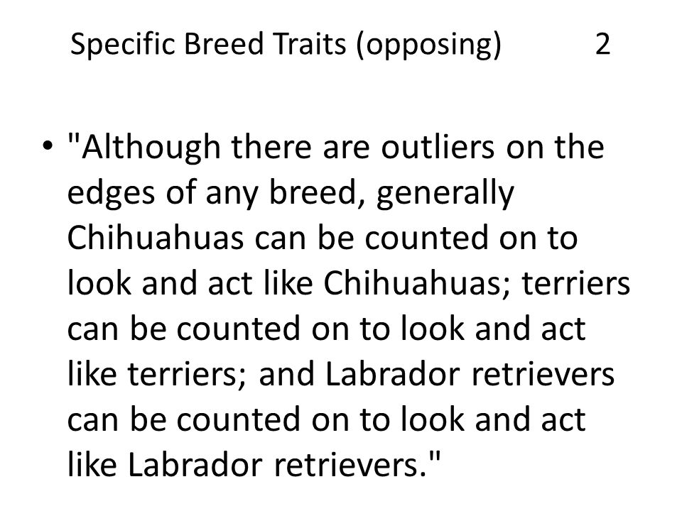 Specific Breed Traits (opposing) 2 Although there are outliers on the edges of any breed, generally Chihuahuas can be counted on to look and act like Chihuahuas; terriers can be counted on to look and act like terriers; and Labrador retrievers can be counted on to look and act like Labrador retrievers.