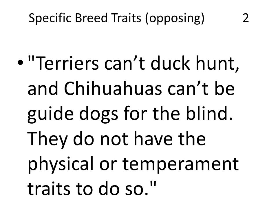 Specific Breed Traits (opposing) 2 Terriers can't duck hunt, and Chihuahuas can't be guide dogs for the blind.