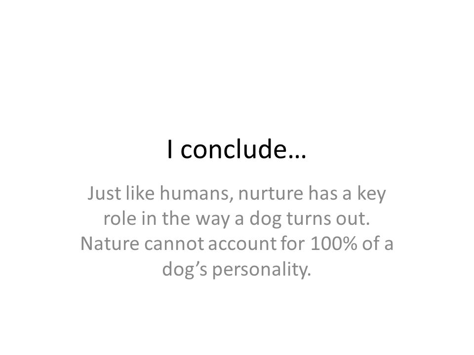 I conclude… Just like humans, nurture has a key role in the way a dog turns out.