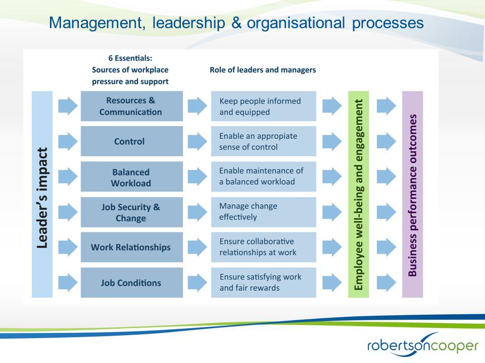 Management, leadership & organisational processes