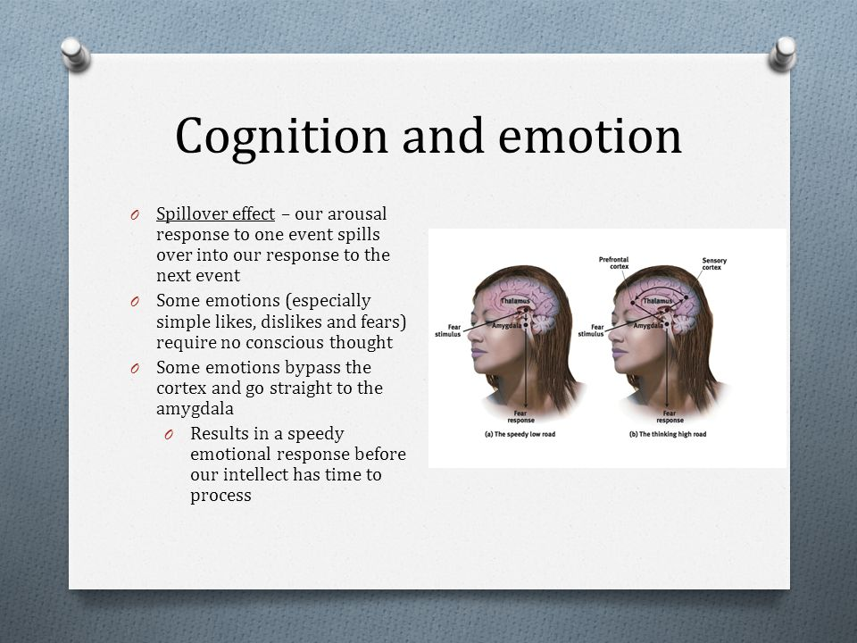 Cognition and emotion O Spillover effect – our arousal response to one event spills over into our response to the next event O Some emotions (especially simple likes, dislikes and fears) require no conscious thought O Some emotions bypass the cortex and go straight to the amygdala O Results in a speedy emotional response before our intellect has time to process