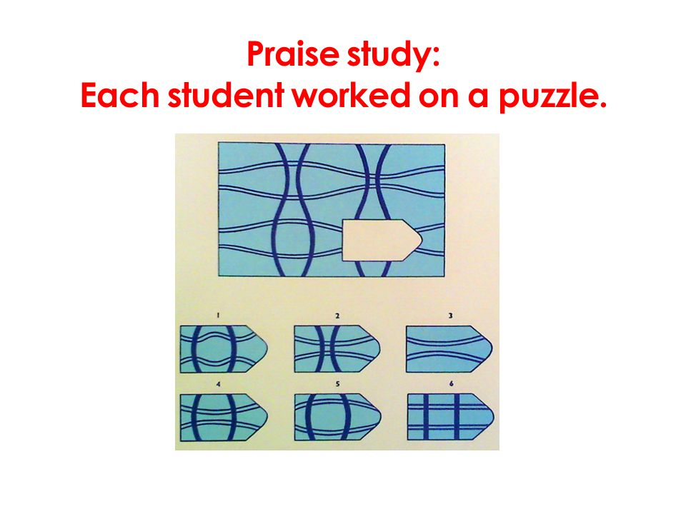 Praise study: Each student worked on a puzzle.