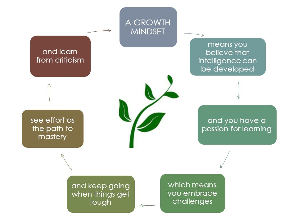 A GROWTH MINDSET means you believe that intelligence can be developed and you have a passion for learning which means you embrace challenges and keep