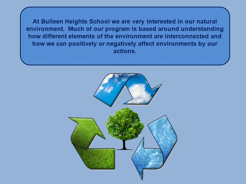 At Bulleen Heights School we are very interested in our natural environment.
