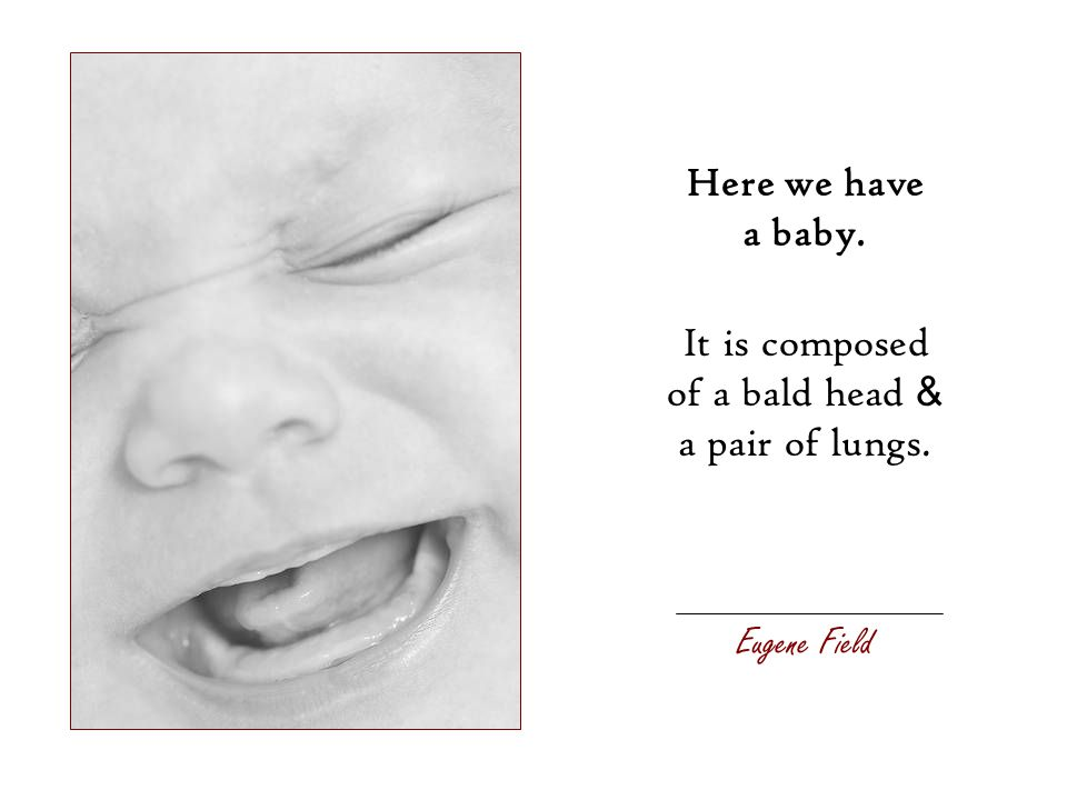 Here we have a baby. It is composed of a bald head & a pair of lungs. Eugene Field