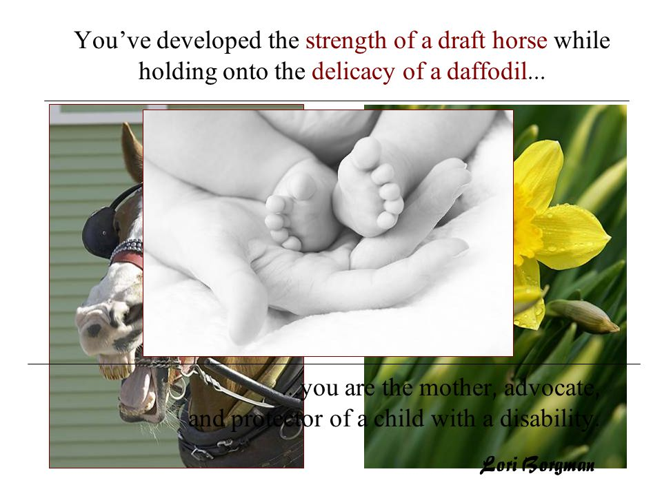 ...you are the mother, advocate, and protector of a child with a disability. You've developed the strength of a draft horse while holding onto the del
