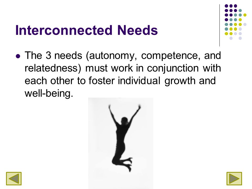 Interconnected Needs The 3 needs (autonomy, competence, and relatedness) must work in conjunction with each other to foster individual growth and well