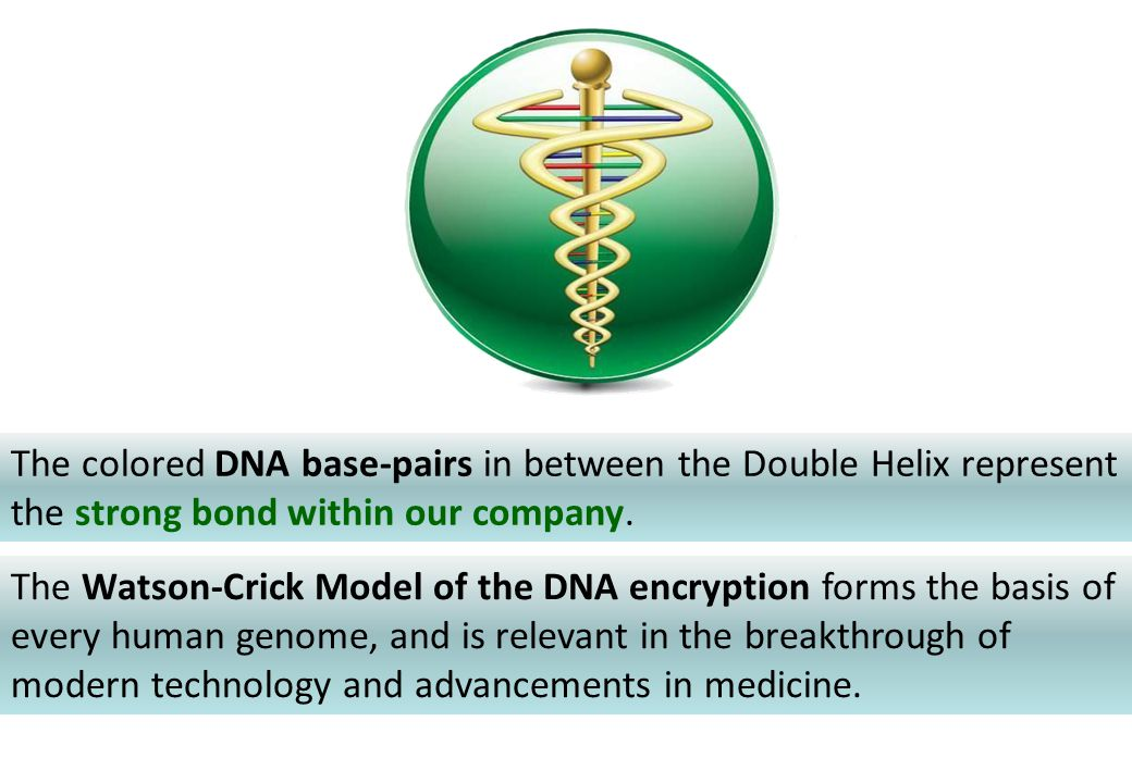 The colored DNA base-pairs in between the Double Helix represent the strong bond within our company. The Watson-Crick Model of the DNA encryption form