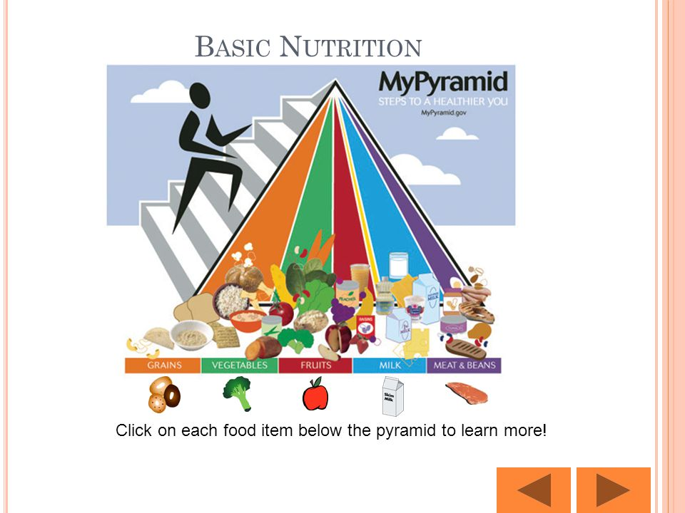 B ASIC N UTRITION Click on each food item below the pyramid to learn more!