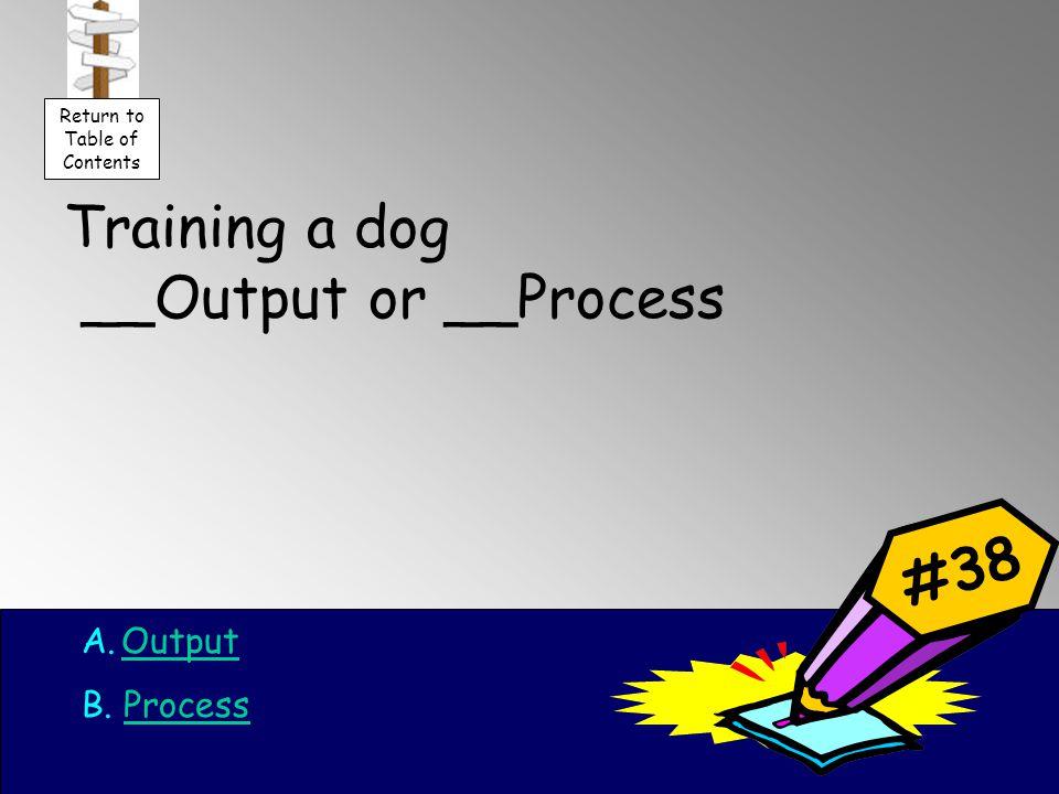 Training a dog __Output or __Process A.OutputOutput B.
